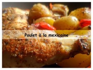 poulet à la mexicaine présentation