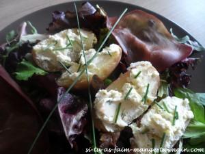 salade de pdt tiede au fromage et boeuf seché1