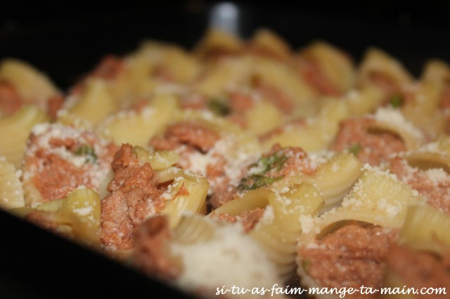 conchiglie au thon & parmesan4