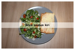 Brick saumon kiri3